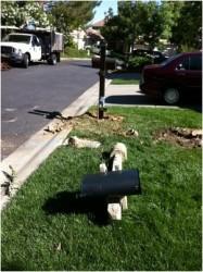 Neighborhood Pictures