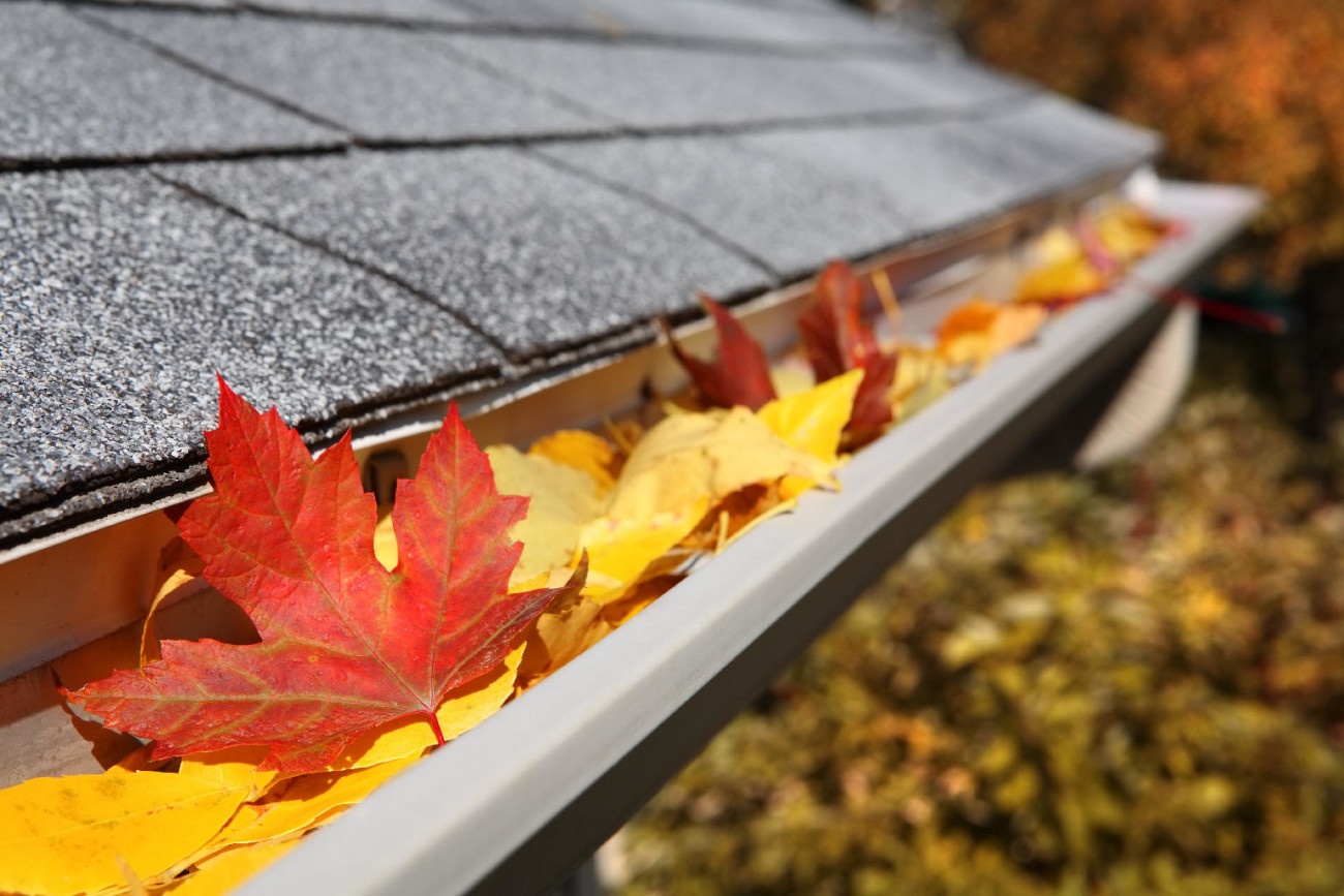 Home Maintenance Projects to Do This Fall